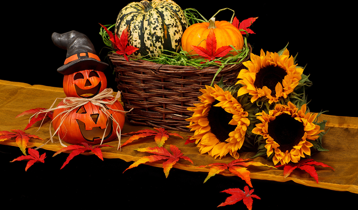 Halloween Holiday Guide